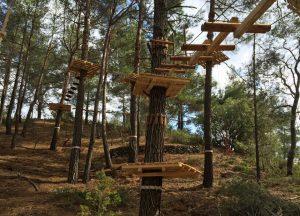 פארק חבלים בקפריסין