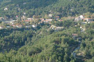 הכפר פאטרס