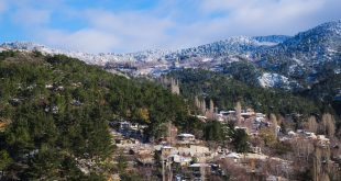 הכפר פרודרומוס