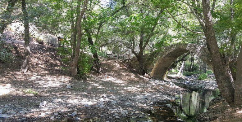 הגשרים הונציאנים